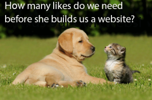Cute kitten -  How many likes do we need before she builds us a website? a website?